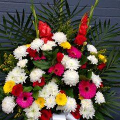 Colourful Tribute