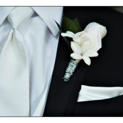 White Rose and Stephanotis